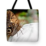 Morphos Butterfly On White Baseball Cap Art Prints Tote Bag