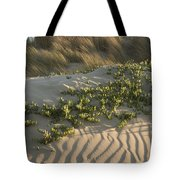 Morro Beach Textures Tote Bag
