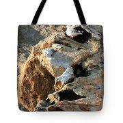 Morro Rock Nesting Tote Bag