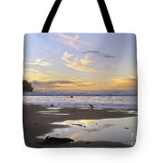 Morro Rock Park Tote Bag