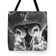 Mosquito Head Tote Bag