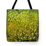 Moss And Fruiting Bodies - Green Lane Pa Tote Bag