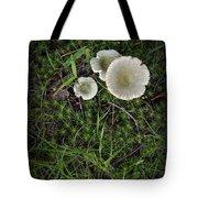 Moss And Fungi Tote Bag