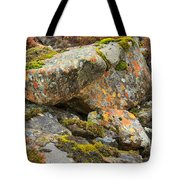 Moss And Lichens In The Scottish Highlands Tote Bag