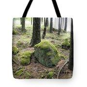 Moss-covered Boulder Tote Bag
