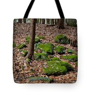 Moss Covered Boulders Tote Bag