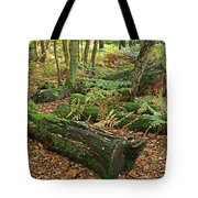 Moss Covered Logs On The Forest Floor Tote Bag