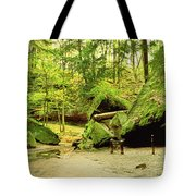 Moss Covered Rocks In Forest, Rocky Tote Bag