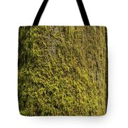 Moss Covered Tree Olympic National Park Tote Bag