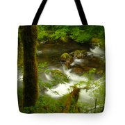 Moss Covered Trees Foregound Eagle Creek Tote Bag