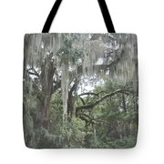 Moss Draped Live Oaks Tote Bag