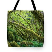 Moss Grows On Vine Maple Trees  Acer Tote Bag