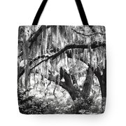 Moss In A Magical Land Tote Bag
