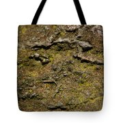 Moss On Rock Tote Bag