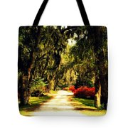 Moss On The Trees At Monks Corner In Charleston Tote Bag