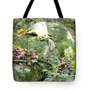 Moss Rock 3 Tote Bag