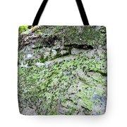 Moss Rock Tote Bag