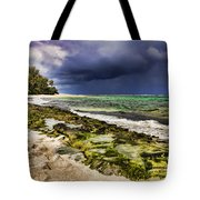 Moss Rocks Tote Bag