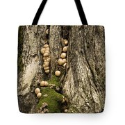Moss-shrooms On A Tree Tote Bag