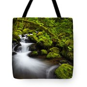 Mossy Arch Cascade Tote Bag by Darren  White