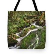 Mossy Creek Tote Bag by Debra and Dave Vanderlaan