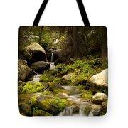 Mossy Falls 1 Tote Bag