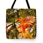 Mossy Lichen Tree Leaves Art Prints Autumn Tote Bag