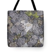 Mossy Mouldy Rock Texture Tote Bag