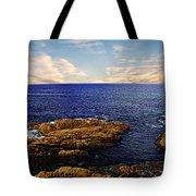 Mossy Point 2 Tote Bag