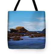 Mossy Point 375 Tote Bag