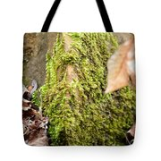 Mossy Rock Abstract 2013 Tote Bag