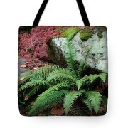 Mossy Rock And Fern Tote Bag