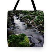 Mossy Rock Streamside Tote Bag