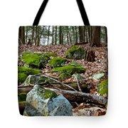 Mossy Rocks Tote Bag