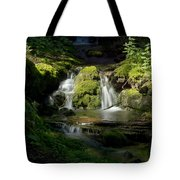 Mossy Rocks Waterfall 1 Tote Bag by Roger Snyder