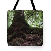 Mossy Roots Tote Bag