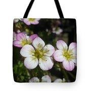 Mossy Saxifrage Flower Carpet Tote Bag