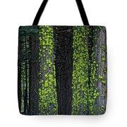 Mossy Sentinels Tote Bag