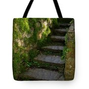 Mossy Steps Tote Bag by Carla Parris