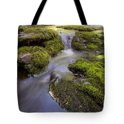 Mossy Stream Tote Bag