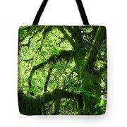 Mossy Tree Tote Bag by Athena Mckinzie