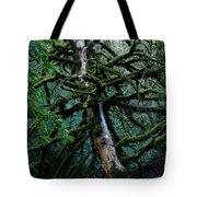 Mossy Tree Tote Bag