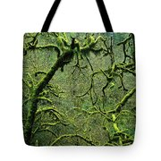 Mossy Trees Leafless In The Winter Tote Bag