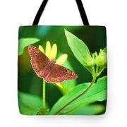 Moth On Yellow Tote Bag