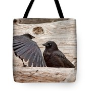 Mother And Baby Crow At The Beach Tote Bag
