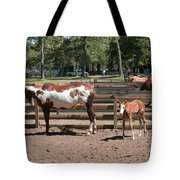 Mother And Baby Horses Tote Bag