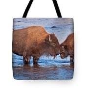 Mother And Calf Bison In The Lamar River In Yellowstone National Park Tote Bag