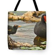Mother And Chick Tote Bag
