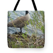 Mother And Child Canadian Geese Tote Bag
