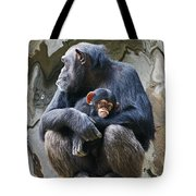 Mother And Child Chimpanzee 2 Tote Bag by Daniele Smith